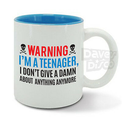 WARNING TEENAGER Mug Cup Mr Miss Grumpy 16, 17, 18 Year Old Birthday Gift Idea • 12.45£