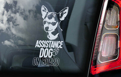 £2.99 • Buy ASSISTANCE DOG Car Sticker, Chihuahua Dog Window Bumper Sign Decal Gift Pet -V07