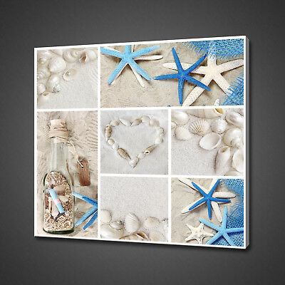 Collage Of Sea Shells Blue White Bathroom Canvas Print Wall Art Picture Photo • 19.99£