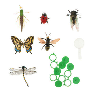 £4.51 • Buy Lot 6pcs Plastic Insect Model Figure Kids Toys Butterfly Dragonfly Ladybird