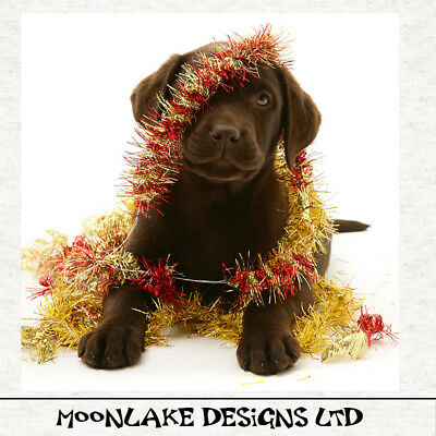 Christmas-Fun Chocolate Labrador Fabric Craft Panels 100% Cotton Or Polyester  • 12.95£