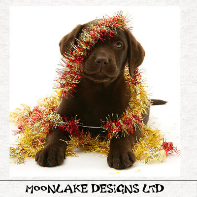 Christmas-Fun Chocolate Labrador Fabric Craft Panels 100% Cotton Or Polyester  • 9.45£