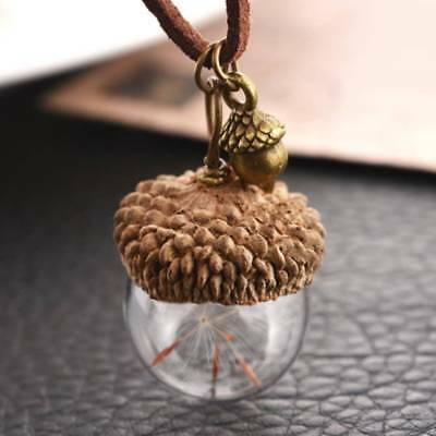 1pc Pineal Acorn Shell Dandelion Glass Pendant Chain Necklace Charm Jewelry Gift • 1.93$