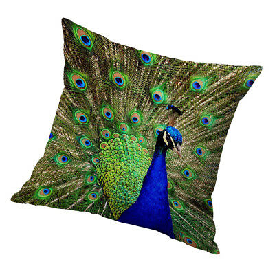 Square Cushion Cover Home Bed Sofa Decor Cover Green Peacock 60x60cm • 7.17£