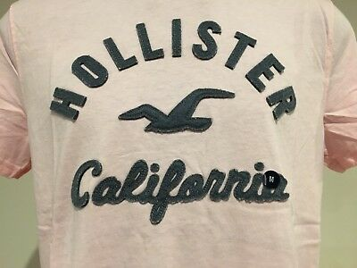 AU24.95 • Buy ABERCROMBIE & FITCH HOLLISTER T-SHIRT Mens Pink Logo Tee Top Size M NWT