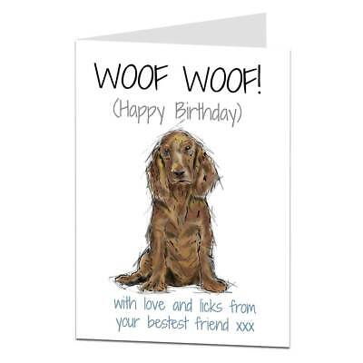 £2.99 • Buy Cocker Spaniel Birthday Card From The Dog For The Owner & Lover