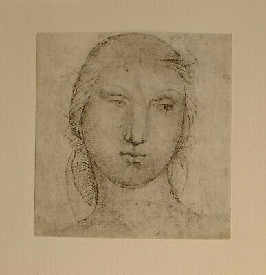 1905 Antique Original Print Timoteo Viti Study Of Womans Head  • 48£
