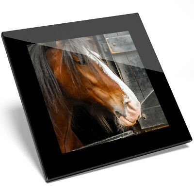 1 X Shire Horse Animal Nature Glass Coaster - Kitchen Student Gift #12685 • 5.99£