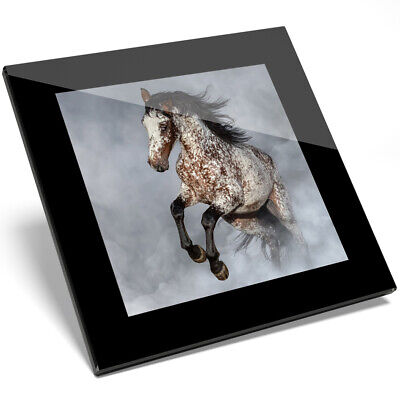 1 X Adorable Appaloosa Horse Equine Glass Coaster - Kitchen Student Gift #2067 • 5.99£