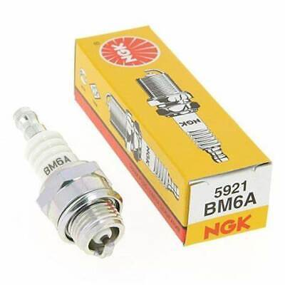 AU7.60 • Buy Lawnmower Whipper Snipper Spark Plug Ngk Bm6a - Replaces Champion Cj8