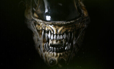 £2541.76 • Buy Extremely Rare! HR Giger Aliens Lifesize Alien Warrior Head Brown LE 300 Statue