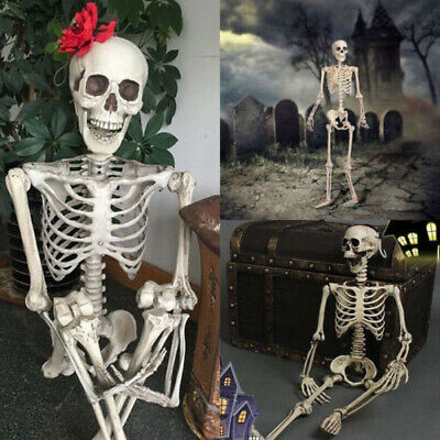 $8.69 • Buy Halloween Poseable Life Size Skeleton Party Prop Decor Human Anatomy Model