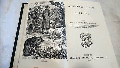 £12 • Buy GLIMPSES INTO PETLAND By J.G.WOOD 1863 1st Edition