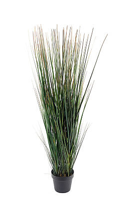 Realistic Artificial Onion Grass With Pot 110cm • 41.32£