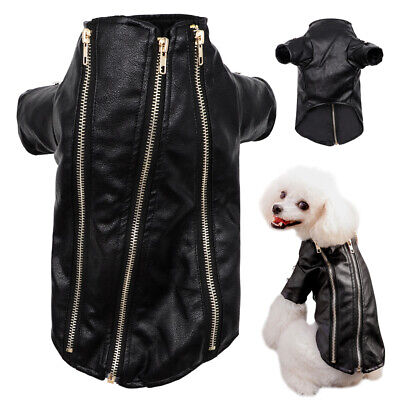£10.61 • Buy Chihuahua Clothes Waterproof Small Dog Coat Leather Jacket Puppy Winter Apparel