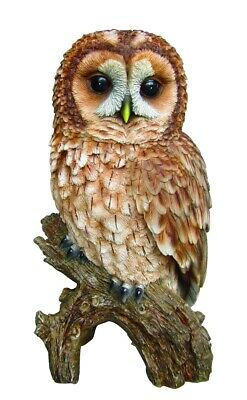 Vivid Arts | Tawny Owl | Highly Detailed Frost Resistant Resin Home Or Garden... • 16.95£
