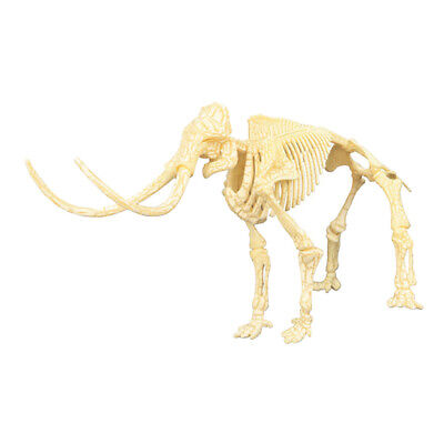 $10.12 • Buy Realistic Dinosaur Skeletons Jigsaw Puzzles Dino Party Favor Toy Gift #2