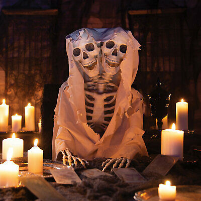 $77.99 • Buy Two-Headed Life-Size Posable Skeleton Halloween Decoration