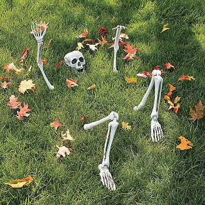 $23.99 • Buy Life-Size Skeleton Yard Halloween Decoration - Home Decor - 1 Piece