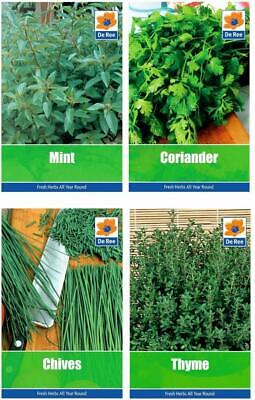HERB Collection Deluxe SEEDS, CHIVES, CORIANDER, MINT & THYME • 3.96£