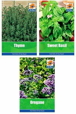 HERB Collection CLASSIC Garden SEEDS - Sweet BASIL, OREGANO & THYME • 2.97£