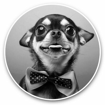 2 X Vinyl Stickers 7.5cm (bw) - Funny Chihuahua Bow Tie Dogs  #39501 • 2.49£
