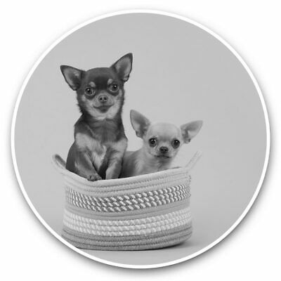 £3.99 • Buy 2 X Vinyl Stickers 10cm (bw) - Funny Chihuahua Dogs Puppy Puppies  #43681
