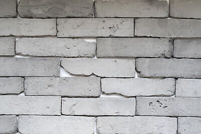 Brick Tiles | Old Brick Cladding Featured Wall Rustic Brick GREY | SAMPLE • 3.90£