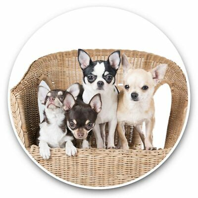 £3.99 • Buy 2 X Vinyl Stickers 10cm - Chihuahua Puppies Dogs Puppy Dog  #44581
