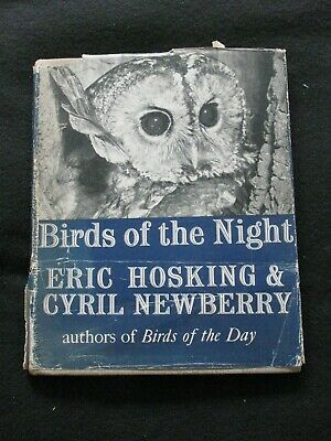 Birds Of The Night By Hosking & Newberry, 1945 Illustrated Book About Owls • 10£
