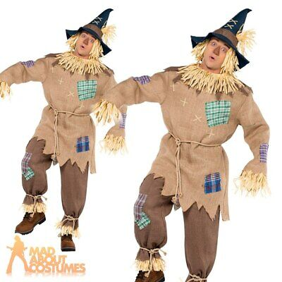 Mens Scarecrow Costume Adult Fancy Dress Fairytale Halloween Book Week Outfit  • 24.99£