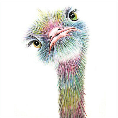 £2.75 • Buy Cute Blank Greeting Card By Artist Maria Moss Cards - Colourful Ostrich Emu