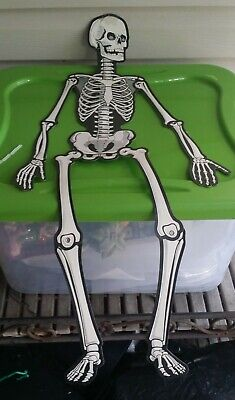 $ CDN20.28 • Buy Vintage Die-cut Halloween Jointed Skeleton 28  Beistle Luhrs