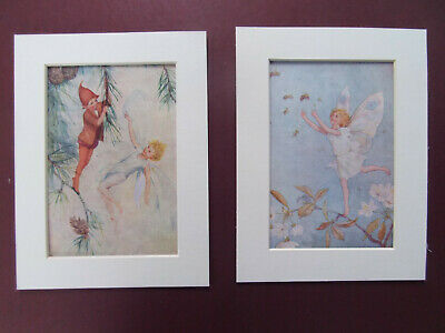 MARGARET TARRANT FAIRIES 2 ORIGINAL 1920's PRINTS   MOUNTS 6 X8  READY TO FRAME • 9.99£