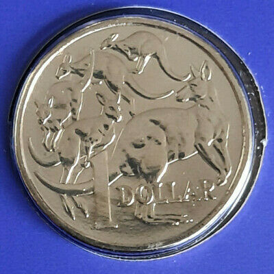 AU24.50 • Buy 2020 Australian One Dollar $1 Coin - MOB OF ROOS - UNC RAM Mint Set
