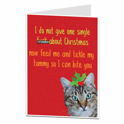 £2.99 • Buy Funny Rude Christmas Card Offensive Xmas Cat Design