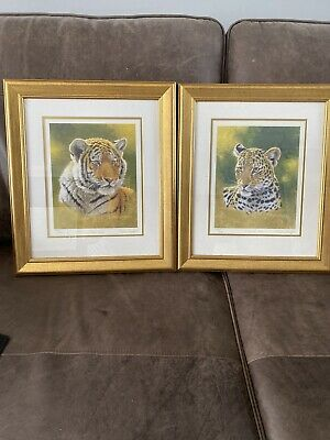 Stephen Gayford Tiger Cub & Leopard Cub Pair Limited Edition Prints • 14.99£
