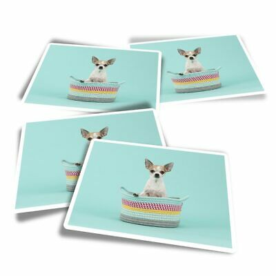 £3.49 • Buy 4x Rectangle Stickers - Chihuahua Puppy Dog Teal Background  #44583
