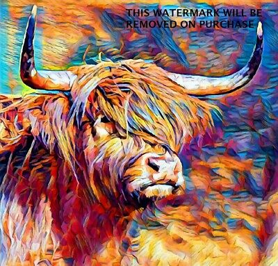 £14.99 • Buy HIGHLAND COW MULTI COLOUR Wall Art 20x20 Inch Canvas Framed READY TO HANG UK ART
