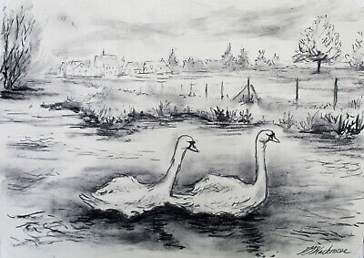 £30 • Buy Swan Nature Bird Watching River Countryside Black And White Original Drawing A3