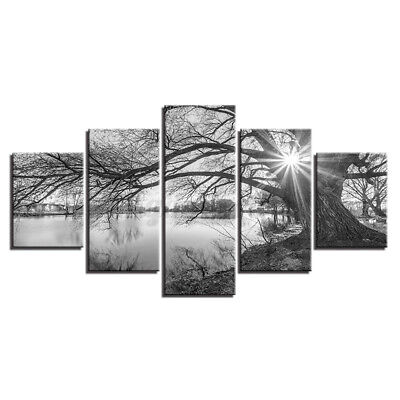 £10.26 • Buy 5-Panel Unframed Black And White Tree Canvas Art Oil Painting Picture Wall Decor