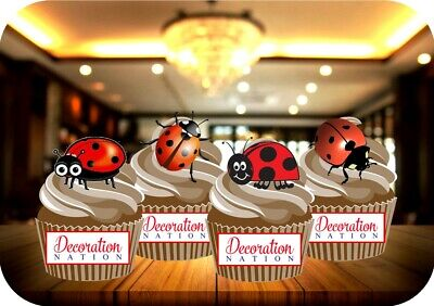 Lady Bird Mix 12 Edible STANDUP Cake Toppers Decoration Birthday Kids Cute Fun  • 2.99£