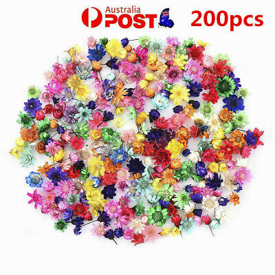 AU13.05 • Buy 200PCS Real Dried Flowers For DIY Art Craft Epoxy Resin Candle Making Jewellery