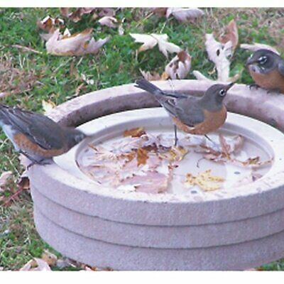 Songbird Essentials SE6017 Bird Bath Raft (Set Of 1) • 14.30£