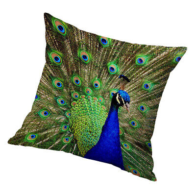 Square Cushion Cover Home Bed Sofa Decor Cover Green Peacock 60x60cm • 8.60£