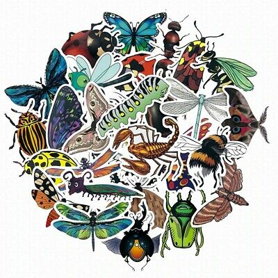 Insects Bees Butterflies Ladybug StickersInsects Diaries ChildrenEducation • 3.49£