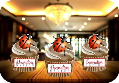 Lady Bird 1 - 12 Edible STANDUP Cake Toppers Decoration Birthday Insect Cute Fun • 2.99£