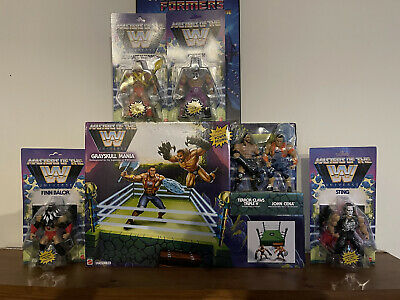 $250 • Buy WWE Masters Of The Universe Wave 1 Figures, Ring