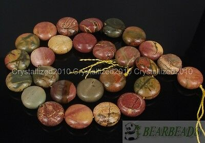 £4.25 • Buy Natural Picasso Jasper Gemstone Round Coin 14mm Loose Beads 15  Jewelry Making