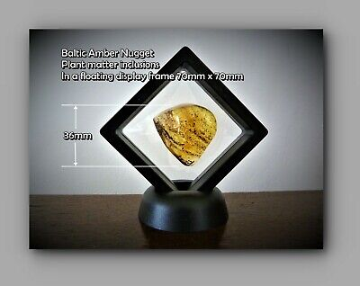 £20 • Buy Genuine Baltic Amber Nugget With Fossil Inclusions Unique Unusual Gift  Ref 3106